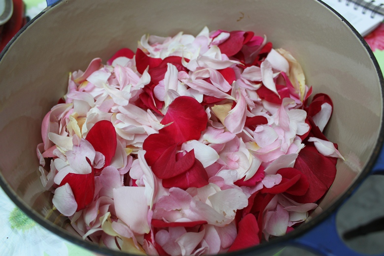 Rose petal jelly 006